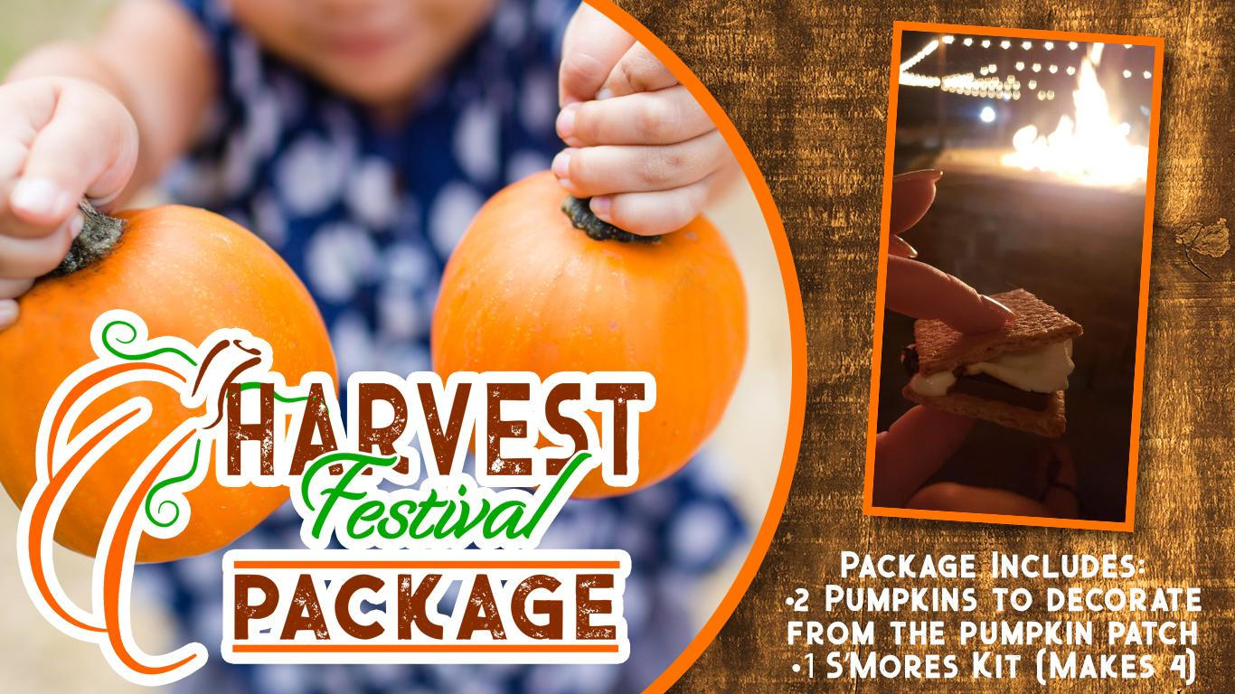 A child holding two small pumpkins. Inset photo of someone holding a S'more with a firepit in the background